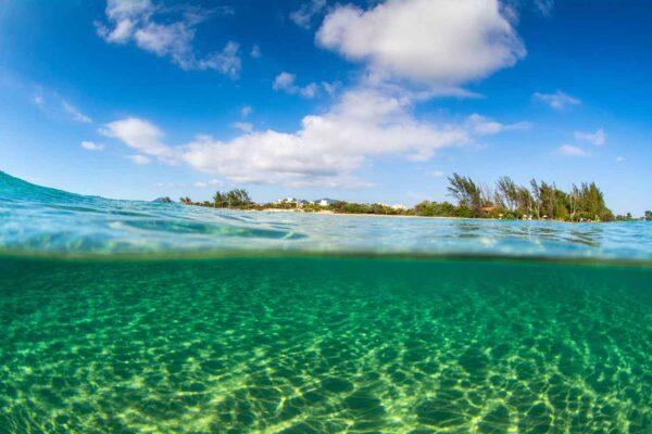 Foto do Campeche tirada de dentro da água